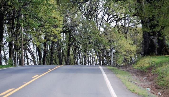 blind road.jpg